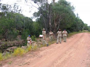Uni students assisting with survey at Herberton.